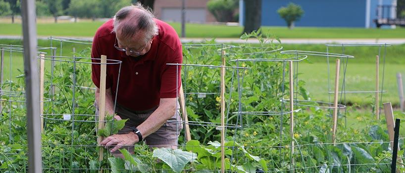 Community gardening washington township dublin oh for Gardening tools dublin